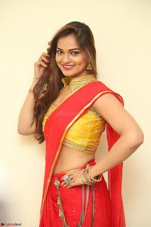 Actress Ashwini in Golden choli Red saree Spicy Pics ~  072.JPG