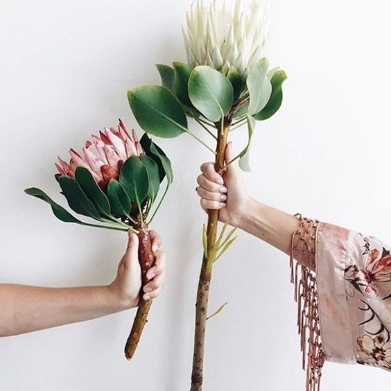 26 Images Flowers Instagram Inspiration {Cool Chic Style Fashion}