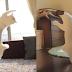 Kucing Menari Balet, Katanya Kucing ini Suka Sekali Menari Balet Lho, Bisa Gitu Ya