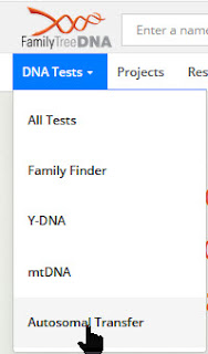 Transfer DNA to Family Tree DNA