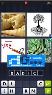 4 Immagini 1 Parola livello 134