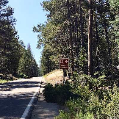 McGurk Meadow Trail