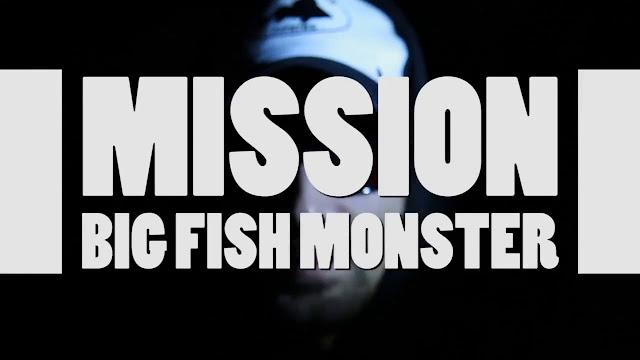 http://frenchtouchfishing.fr/media/liens/1/FrenchTouchFishing_2807cata_ftf_2016-final.pdf