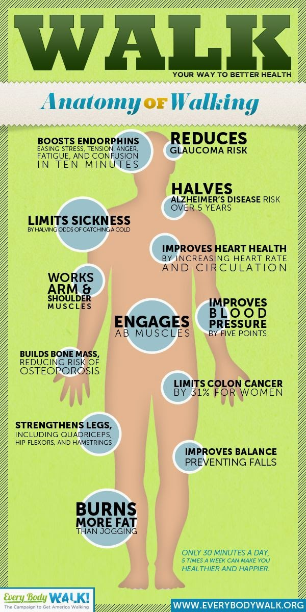 hover_share weight loss - anatomy of walking