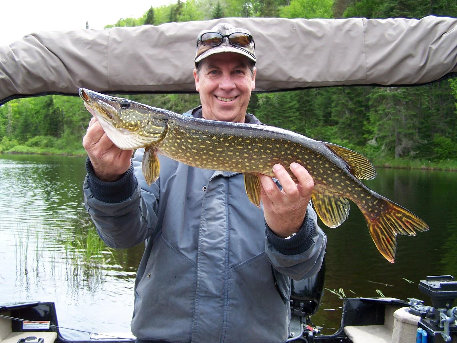 La pêche au nord du lac dOnéga