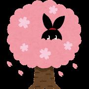 お花見をしている ぴょこ のイラスト