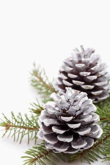 Marzua decoraci n de navidad con pi as secas for Decoracion con pinas secas