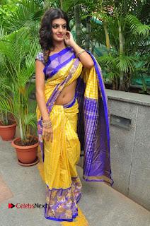 Model Tanishq Tiwari Pictures in Saree at Silk India Expo Curtain Raiser  0088.JPG
