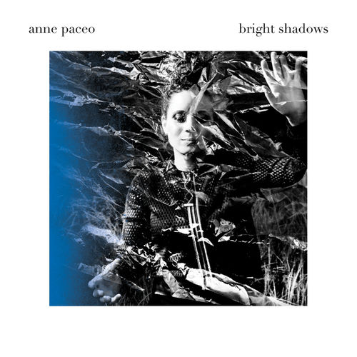 Bright Shadows Anne Paceo La Muzic de Lady Blog Musical