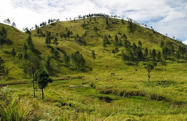Pendakian Pusuk Buhit, Antara Goresan Luka dan Keindahan Samosir