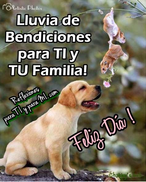 Lluvia de Bendiciones para TI y TU Familia!  Feliz Día !