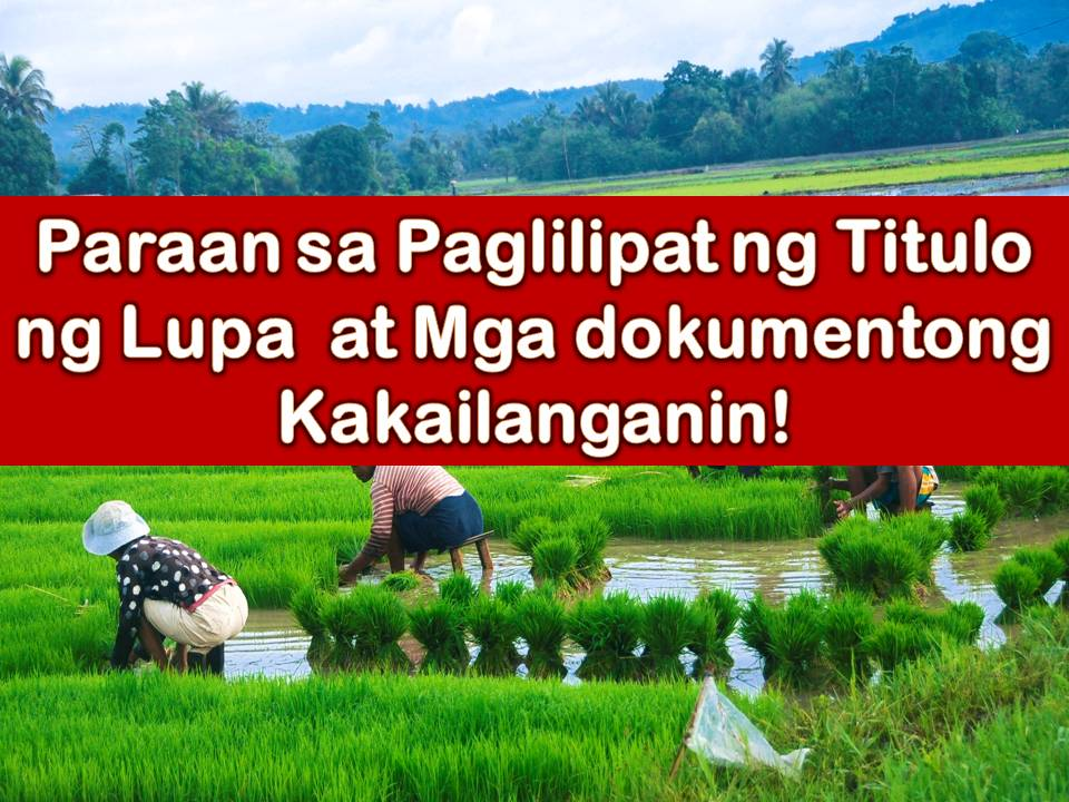 There's a lot for sale, be it a vacant lot or agricultural lot. You are interested. You pay the seller. So now you think the property is already yours? Not yet, unless you can provide a new land title where your name is stated as a new owner. Processing of land title transfer is one of the tedious parts of owning a property in the Philippines. Completing the process of transferring land title from the previous owner to you as a buyer and a new owner is considered to be the most crucial steps. This is an important legal process because the buyer will now have a public record declaring him as a new owner of a particular property as a protection for investment and to avoid ownership issues in the future.
