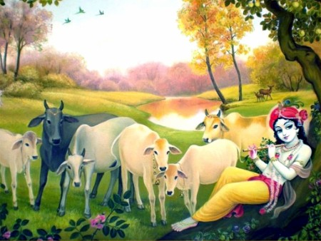download lord bal krishna images