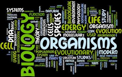Cabang Cabang Biologi dan Pengertiannya