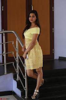 Shipra gaur in V Neck short Yellow Dress ~  055.JPG