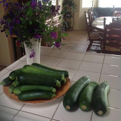 Garden Zucchini: LadyD Books