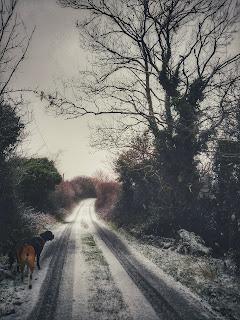 snowy winter seen from Connemara. Galway.Ireland