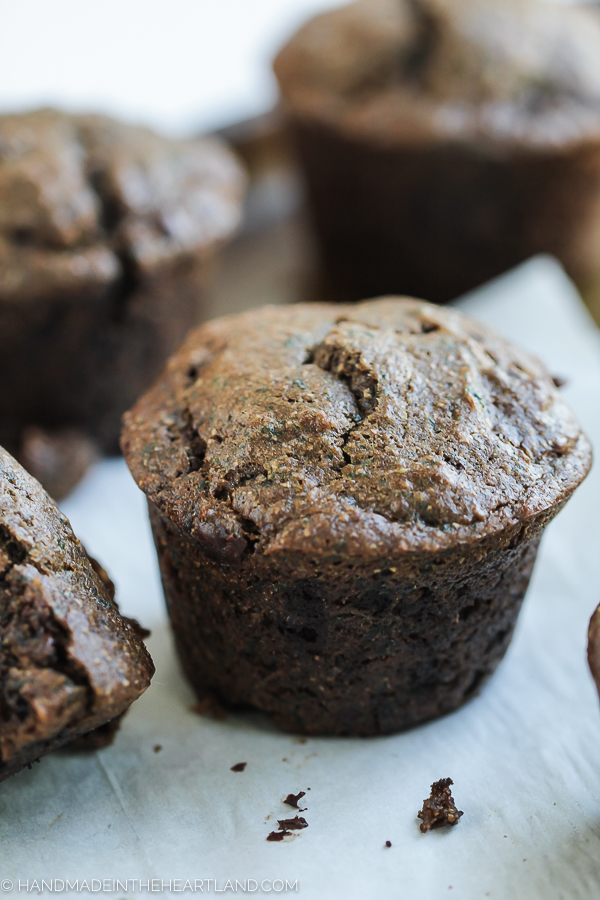 whole grain chocolate muffin recipe
