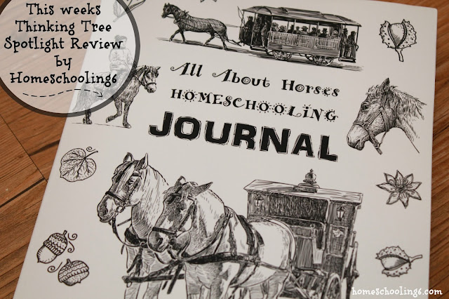 Horse Lovers Handbook by The Thinking Tree
