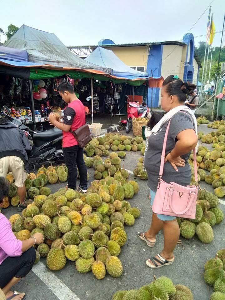 pesta durian kanowit denai borneo