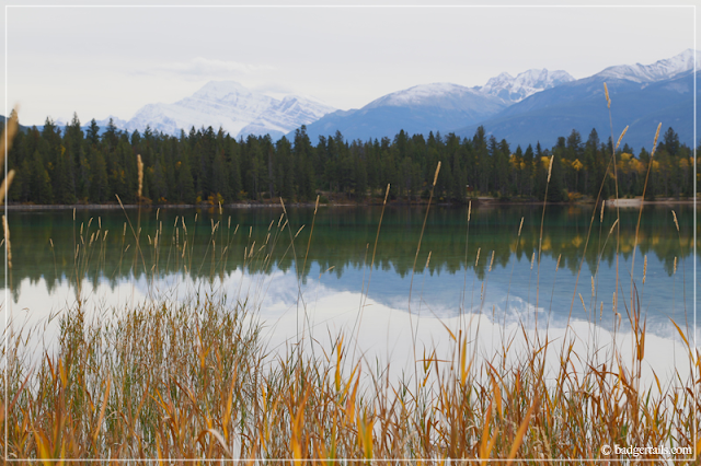 Lake Edith photographed through reeds with Mount Edith in Background in Jasper National Park, Alberta, Canada. > See more on Badgertails.com <