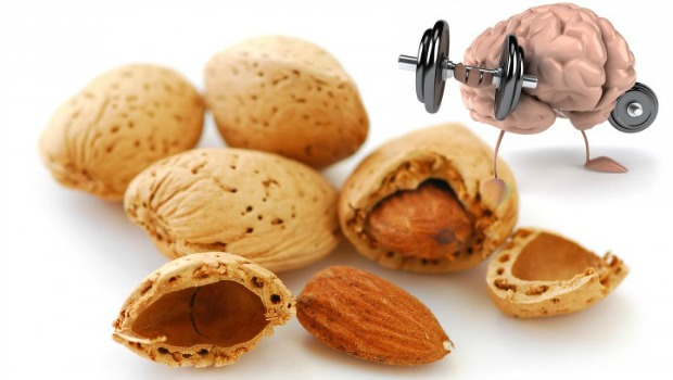 Almonds Maintain Healthy Brain Function | Health and Fitness Bible