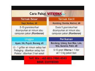 Jual Viterna Plus Nasa Di PATIANROWO NGANJUK 082334020868