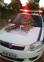 GCM de Varginha (MG) impede caça de pássaros silvestres