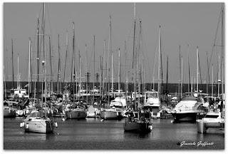 Puerto del Buceo. Montevideo. Uruguay.