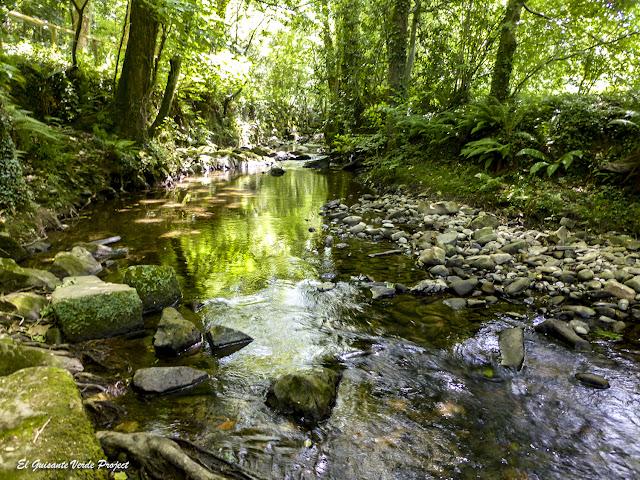 Rio Arrazola, valle de Atxondo por El Guisante Verde Project