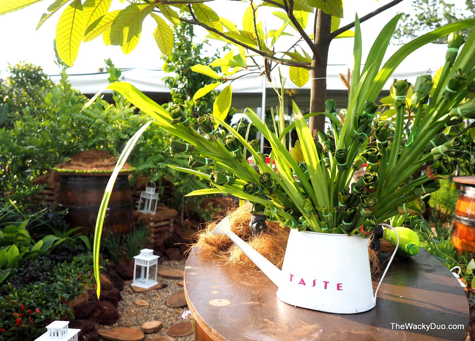 Singapore garden festival in full bloom the wacky duo for Indoor gardening expo 2014