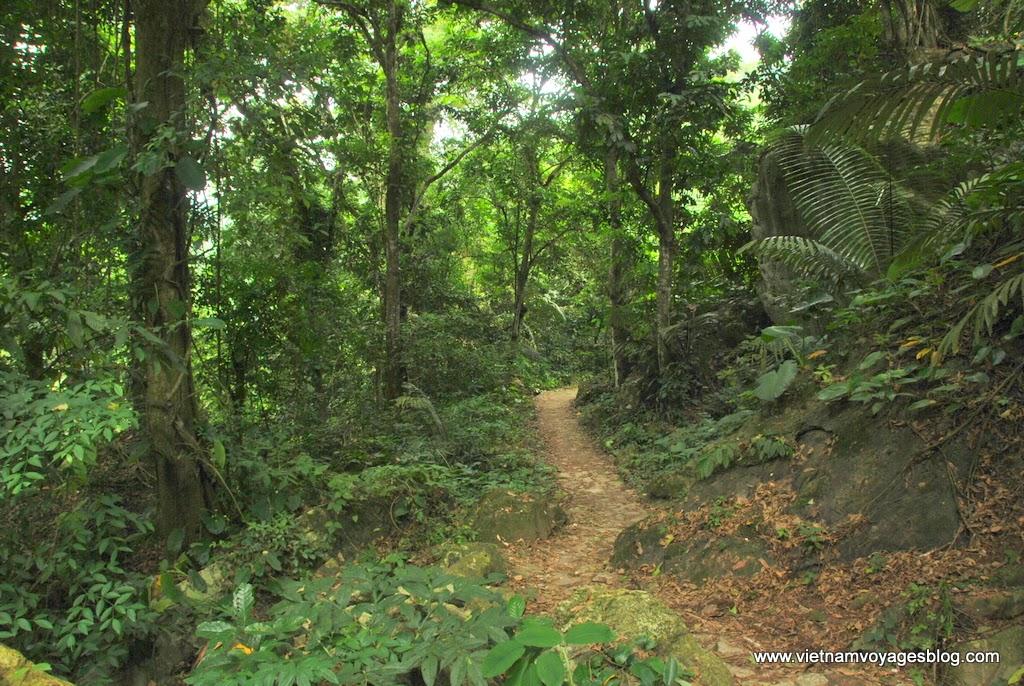 Than quan Thác Đầu Đẳng trong vườn quốc gia Ba Bể