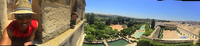 From the top of the alcazar