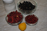 ingrediente sirop de fructe