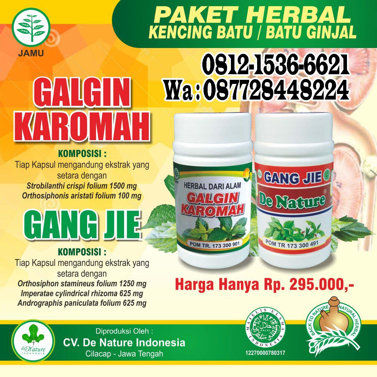 Obat Herbal Penghancur Batu Ginjal