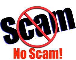 OMG!!! The new adsense scam please beware and don't fall victim.