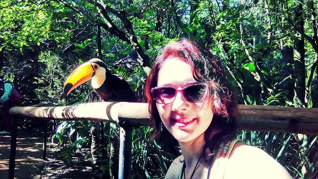 Tucano no Parque das Aves, Foz do Iguaçu.