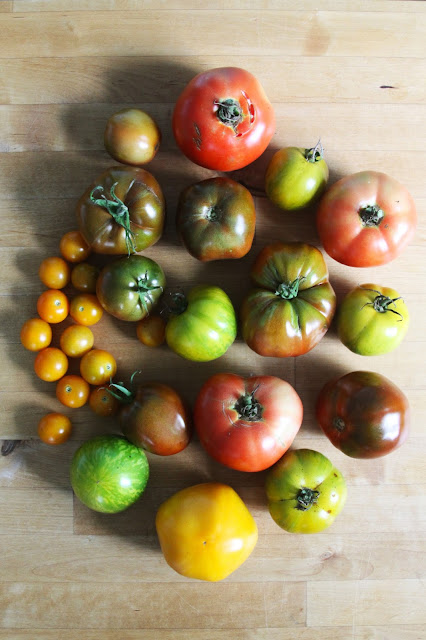 tomatoes, heirloom tomatoes, garden tomatoes, Anne Butera, My Giant Strawberry