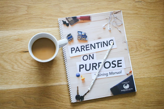 Pretty Real: How The Parenting on Purpose DVD Series Has Helped Our Family