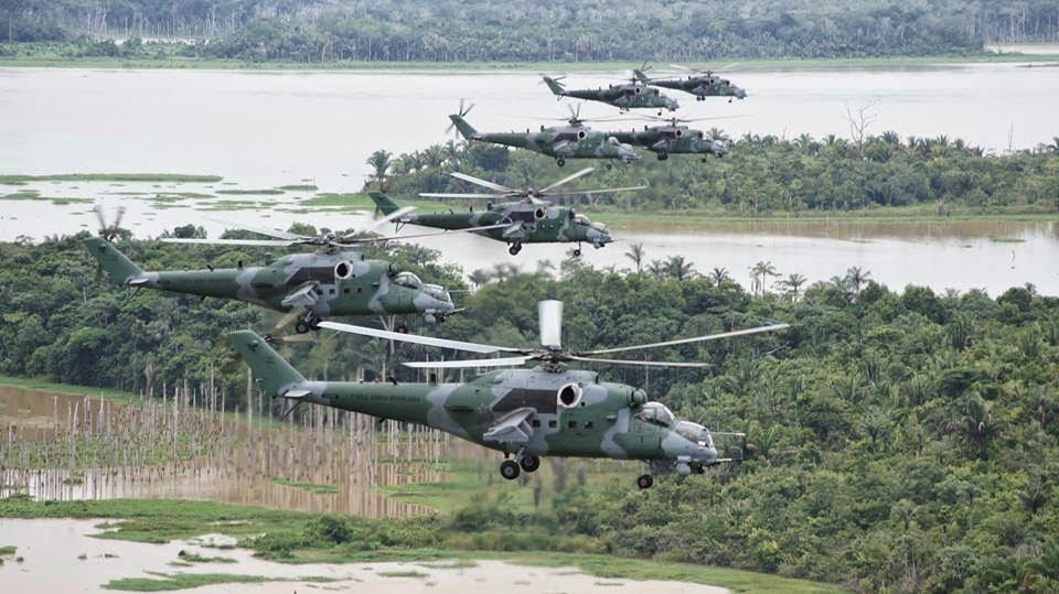 Armée Brésilienne/Brazilian Armed Forces/Forças Armadas Brasileiras - Page 36 10409127_779785818781120_8035266301003033183_n