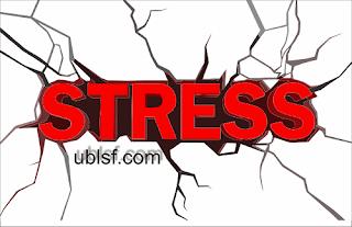 Menjaga Mental Kacer Agar Selalu dalamTop Performa Menjaga Mental Kacer Agar Selalu dalam Top Performa