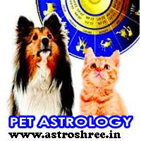 Pet Astrology, Pet Horoscope, How To take Benefit from Pets, How to get success through pets, How Astrology helps to make our pet powerful, Make Money from pet, Pet Problems and Solutions.