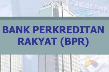 Lowongan Kerja Pekanbaru : PT. BPR Tuah Negeri Mandiri Februari 2017