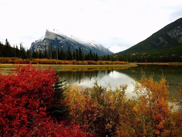 parque nacional banff que hacer