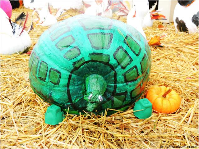 Calabazas Decoradas para Halloween: Tortuga