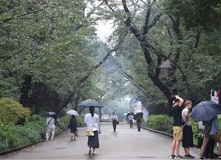 雨の上野公園
