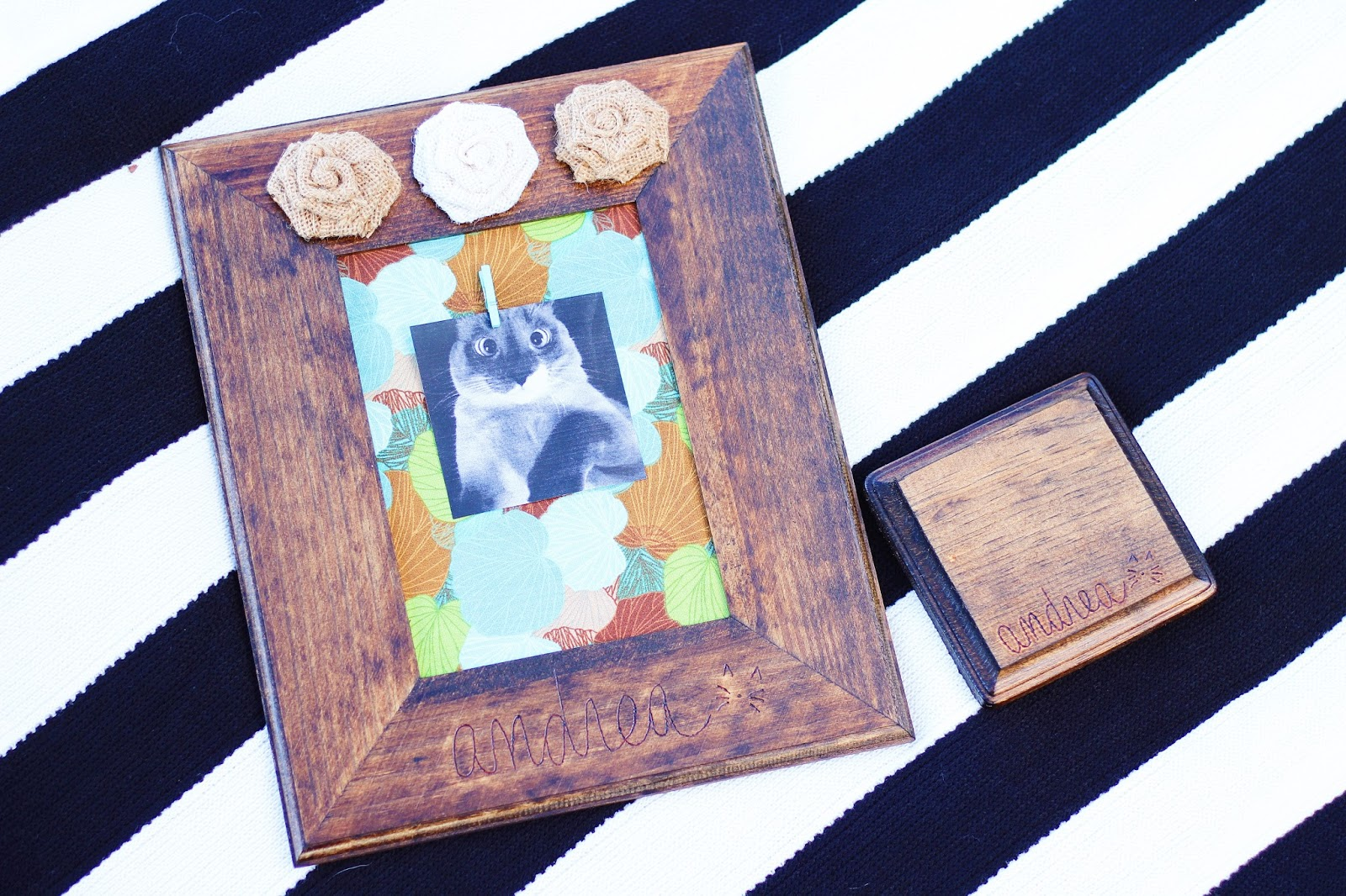 Robyns Nest Diy Clothespin Photo Frame