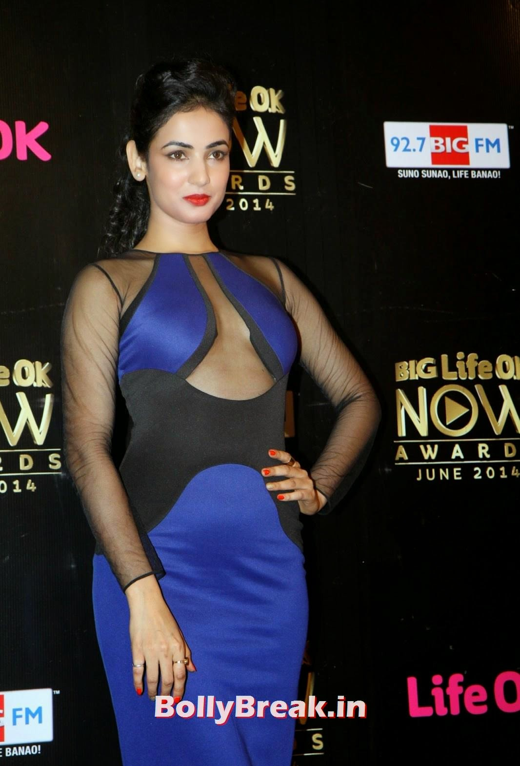 ,  Sonal Chauhan Hot Pics in Blue Dress from Life OK Now Awards 2014