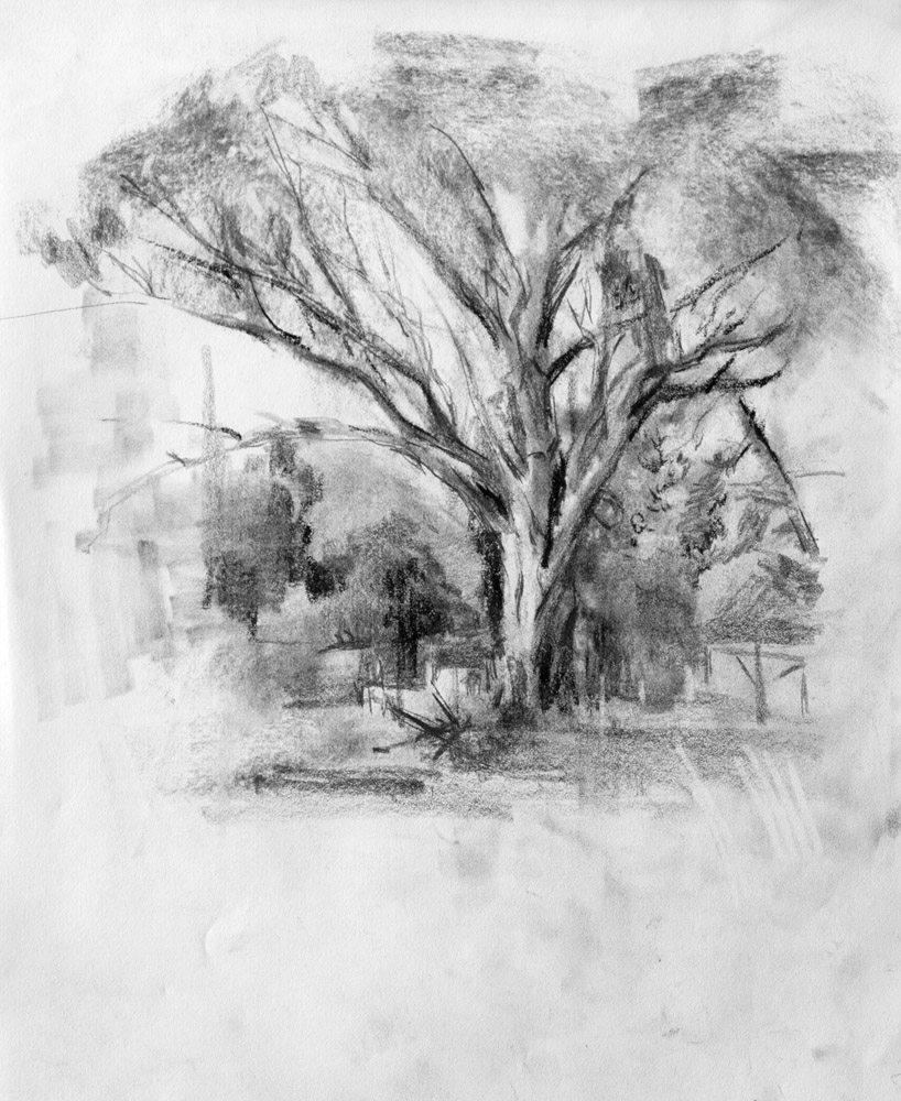 The Main Loop: Charcoal Drawing: A Logical Method (Video ...