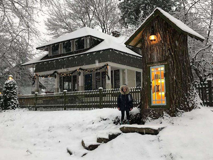 Woman Transformed A 110-Year-Old Dead Tree Into A Free Little Library For The Neighborhood